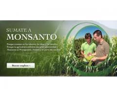 Monsanto Argentina S.A.I.C