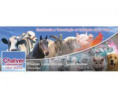 CHALVER LABORATORIOS SALUD ANIMAL