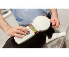 Control Veterinario - Identificación Animal